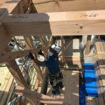 豆口台の家 建方